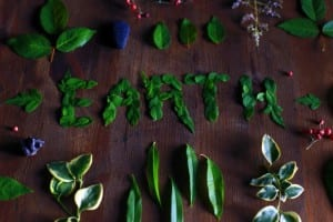 EARTH spelled out with leaves on wooden background, other leaves border